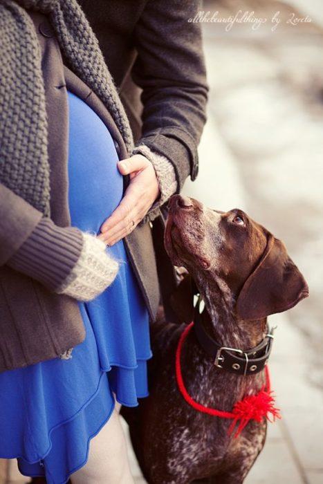 mujer embarazada de vestido azul con su perro