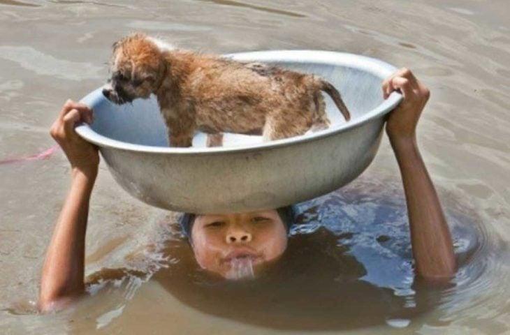 niño salvando a un perrito de ahogarse