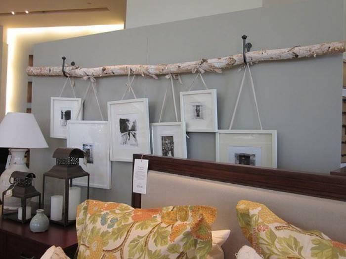 fotos colgadas de una rama