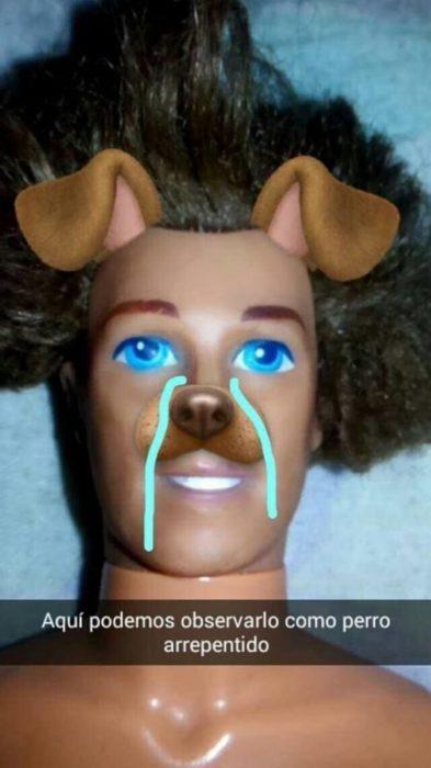 ken con su cara de perro arrepentido