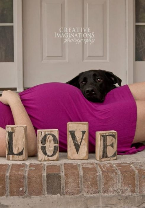 fotografía de maternidad con perro