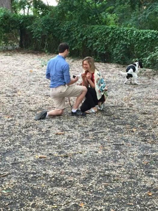 pareja, perro defecando