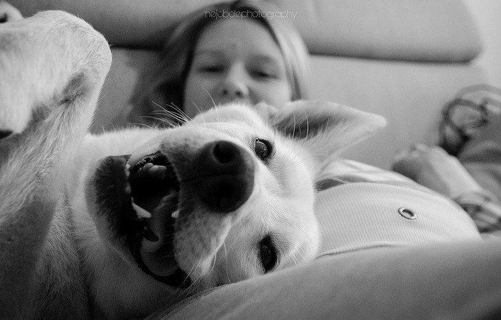 perrito feliz con mujer embarazada