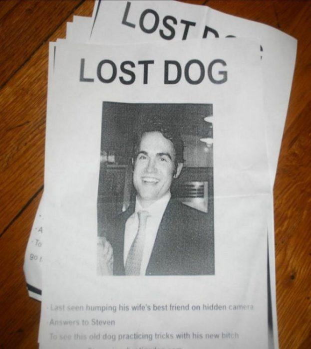 perro perdido infidelidades