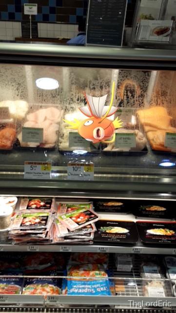 Un pokemón en las carnes frías