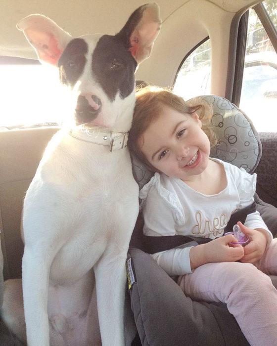 niña al lado de un perro