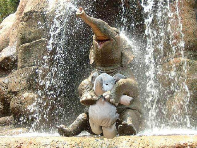 jugando bao la fuente del agua