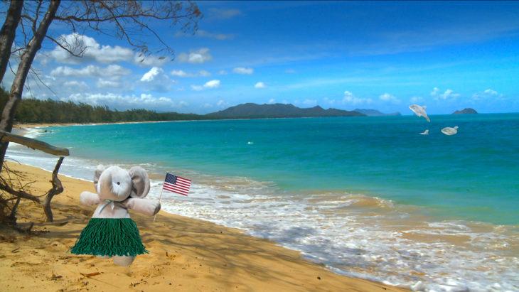conociendo hawái