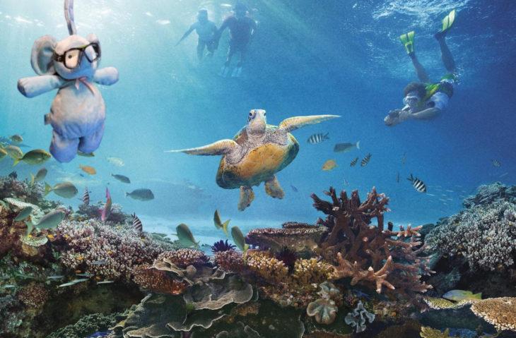arrecifes con tortugas geniales