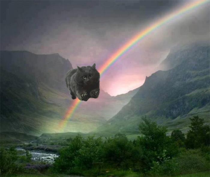 atravesando un arcoiris