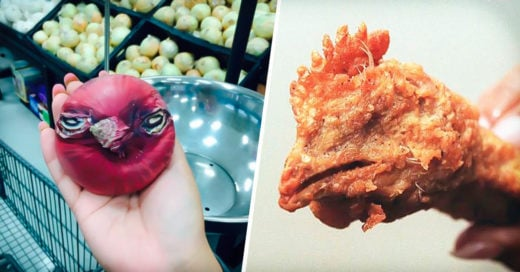 COVER 21 Fotografias de las comidas mas bizarras que te haran gritar