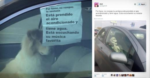 COVER Dejan a su perro encerrado en el carro con un gracioso mensaje e Internet los trollea