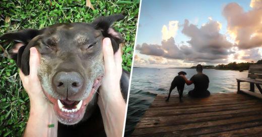 COVER Le dijeron que su perra moriría en 6 meses, y decidió llevarla a vivir el viaje de su v