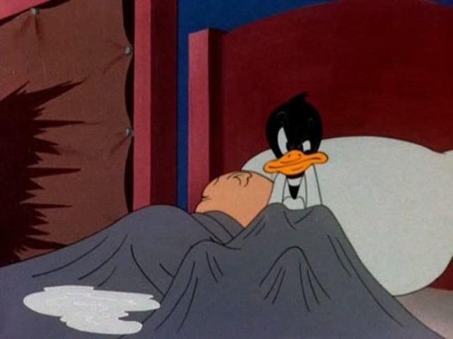 Pato acostado con cerdo en cama