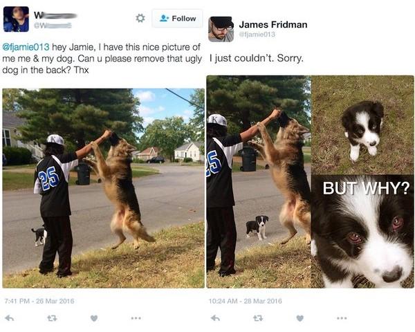 James Fridman puedes quitar al perro de atrás