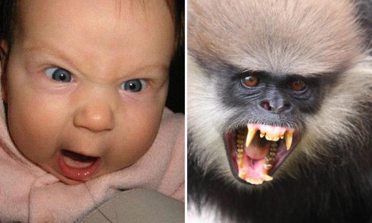Niño con cara de simio