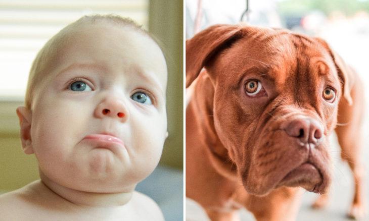 Niño con cara de perro