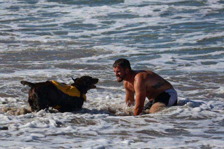 Perra labrador y hombre jugando en la playa