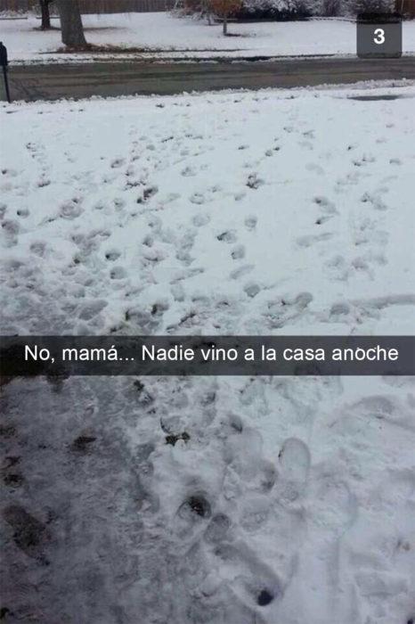 Snapchat Divertidos. No, mamá. Nadie vino a casa anoche