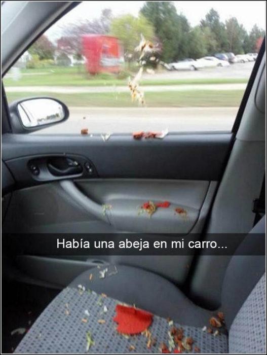 Snapchat Divertidos. Comida tirada por todo el carro