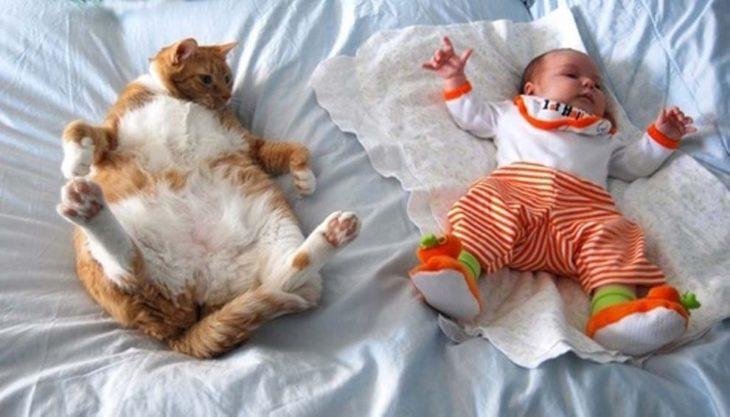 Bebe y gato acostados iguales
