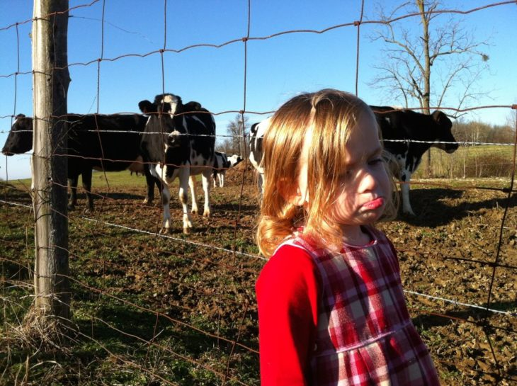 niña triste y vacas