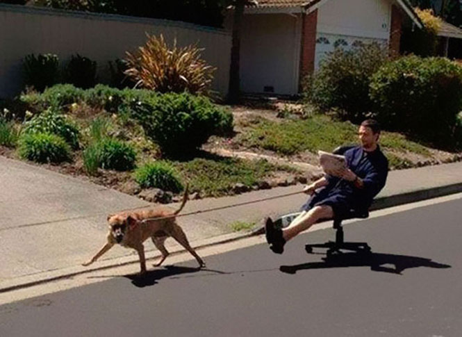 Un hombre saca a pasear a su perro sentado en una silla de ruedas