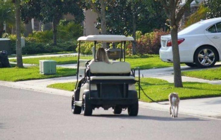 Mujer saca a pasear a su perro en un carrito de golf
