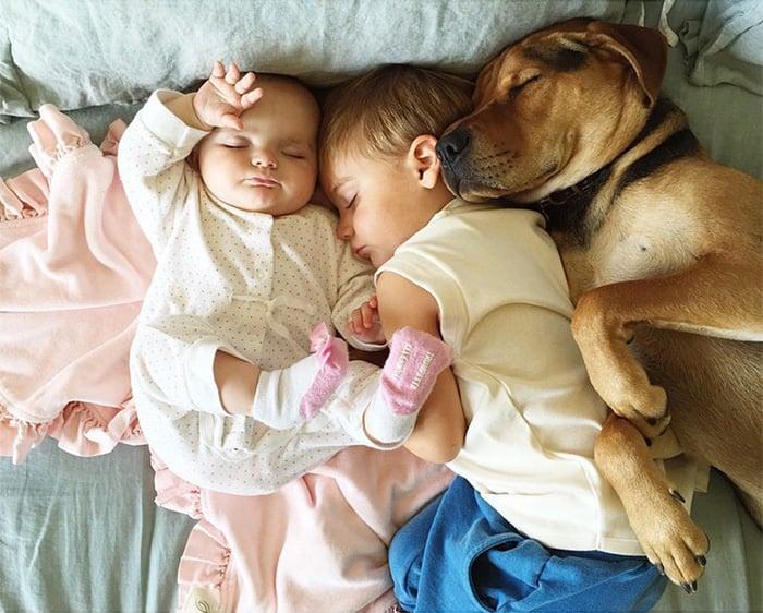 dos niños durmiendo con un perro