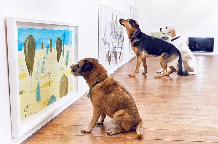 perros viendo una pintura