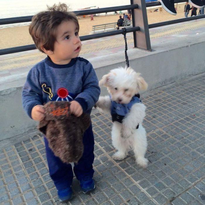 niño y perrito