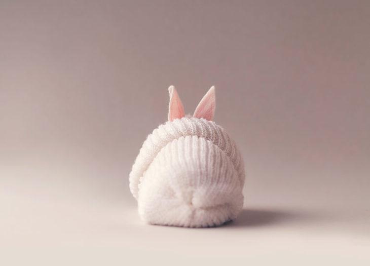 conejo de espaldas