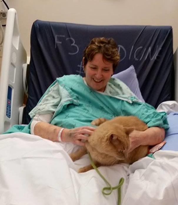 señora internada en hospital y su gato
