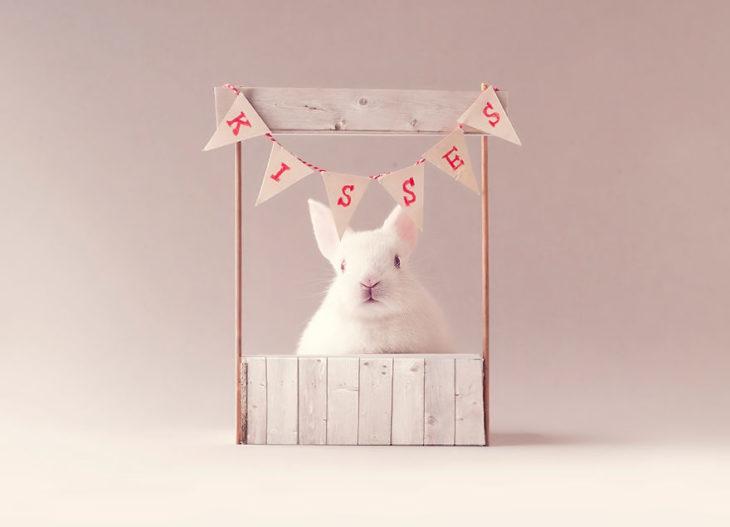 conejo con corazones