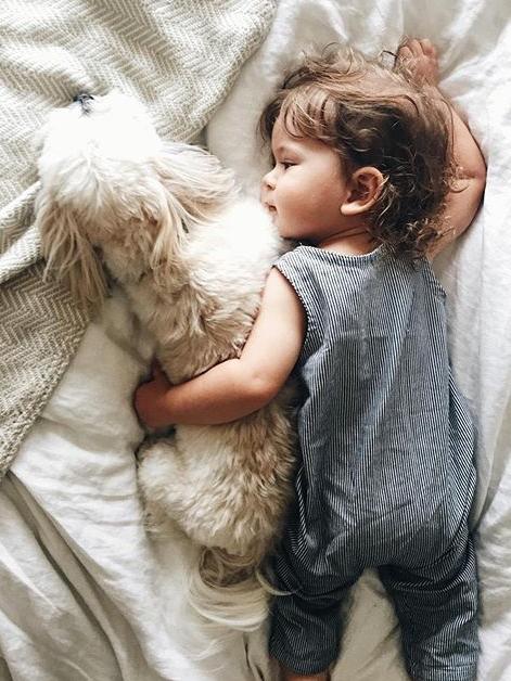 niño acostado con perro french