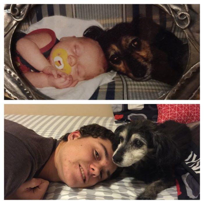 niño y perro antes y después de crecer