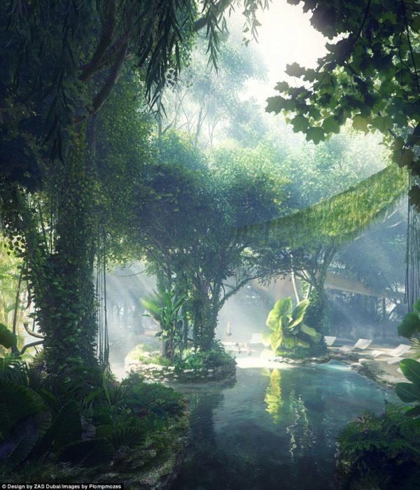 jungla con un lago
