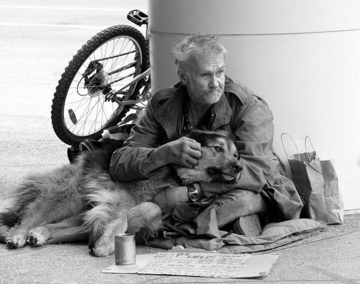 perro y vagabundo