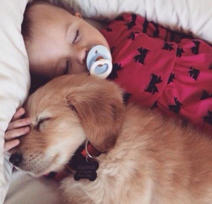 niña durmiendo con cachorro