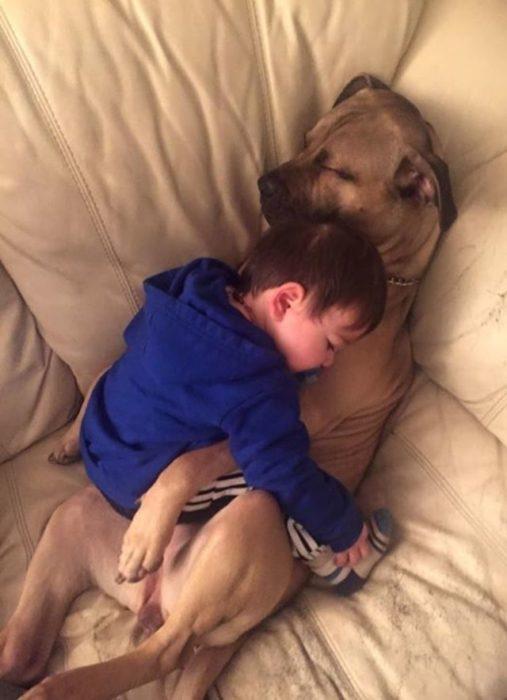 niño que duerme abrazando a su perro