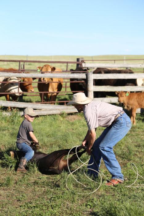 niñ y hombre en una granja