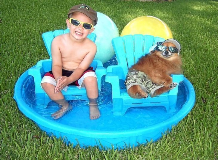 niño y perro en piscina
