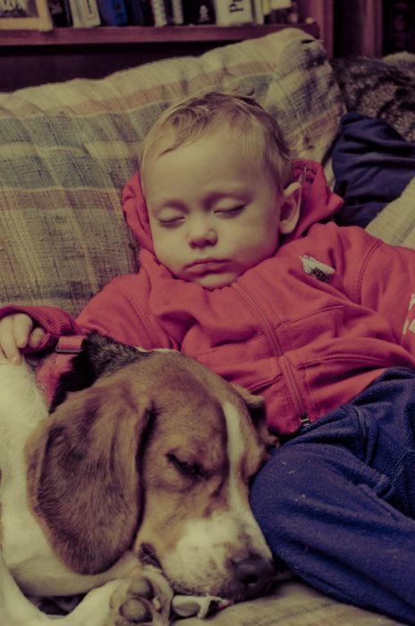 niño con sudadera roja durmiendo con un perrito