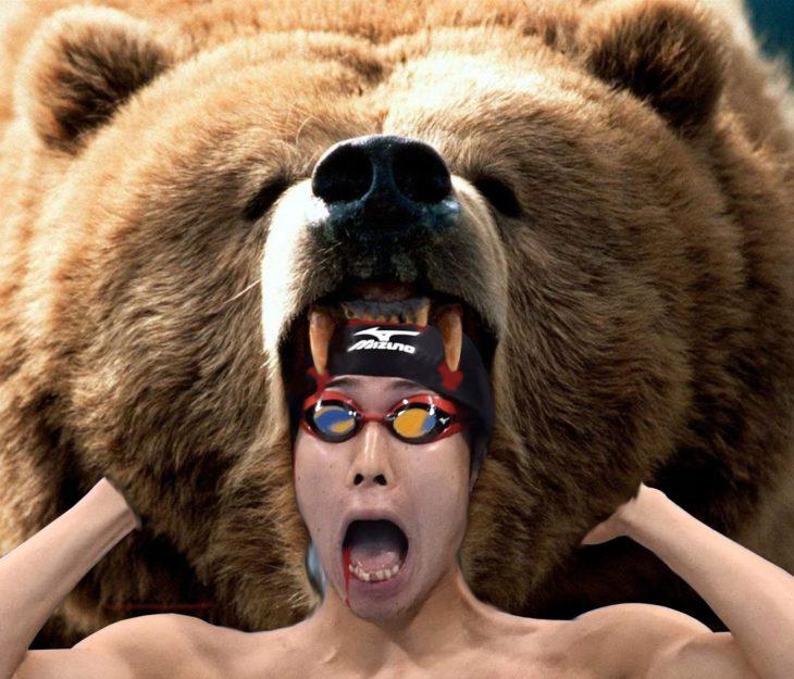nadador y oso
