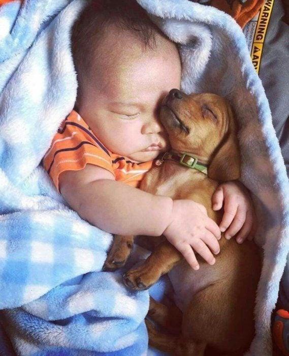 bebé dormido abrazando a un cachorro