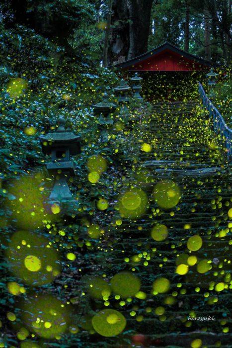 paisaje japonés con luciérnagas