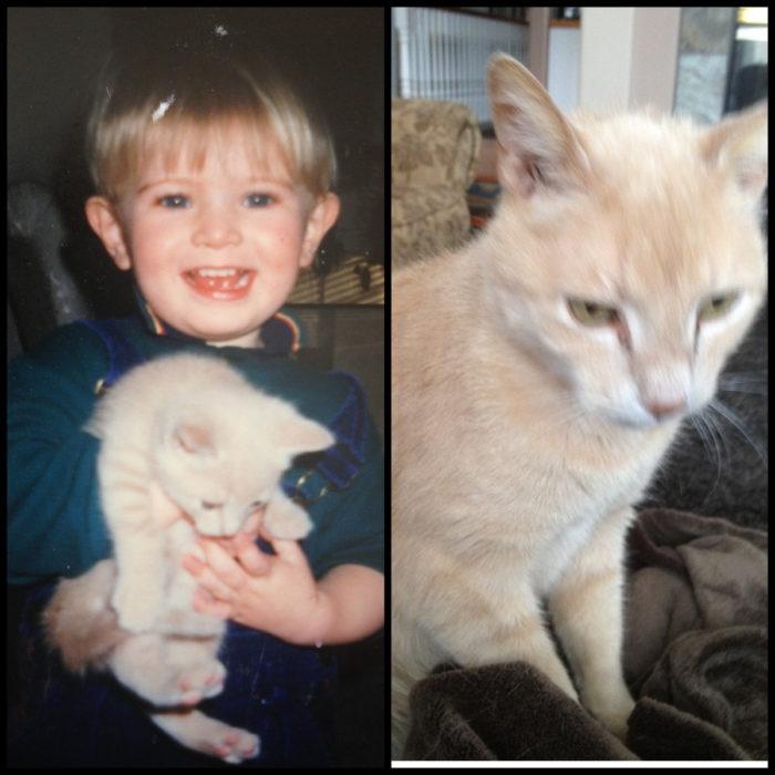 niño y gato izquierda gato anciano derecha