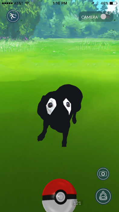 perrito editado de pokemón