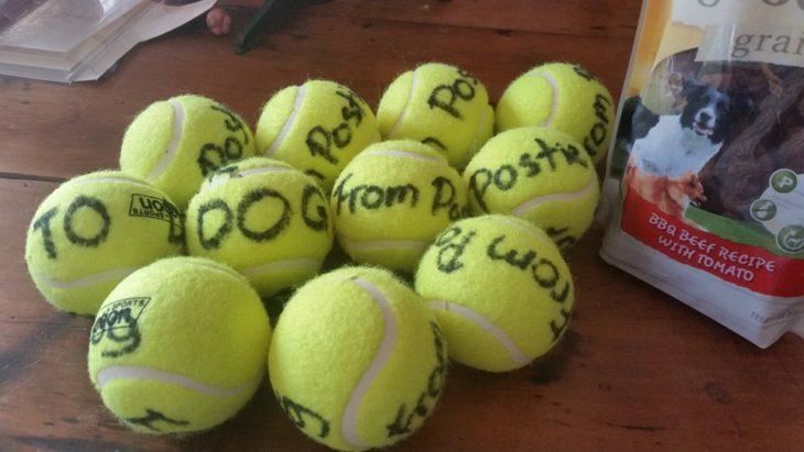 Pelotas de tennis regalo del cartero para los perros