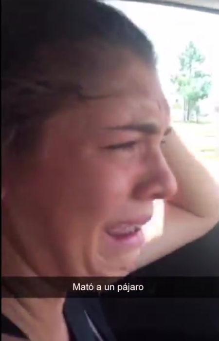 Snapchat. Chica llora proque atropelló a un pájaro